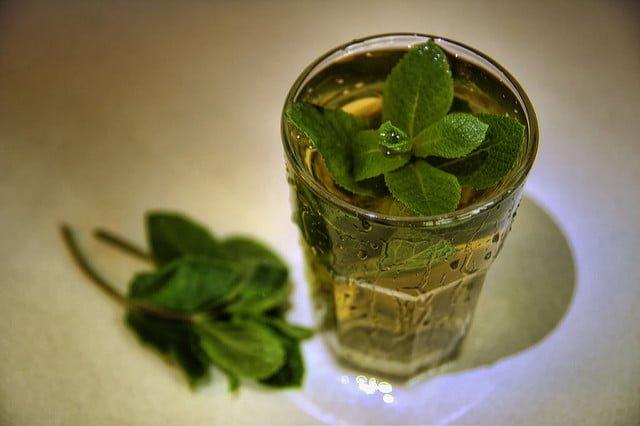 Tee gesund Leberschaeden Krebs Bundesinstitut News